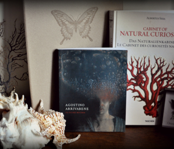 rocaille-agostino-arrivabene-libri-conchiglie