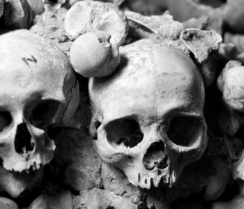 rocaille-catacombes-ossuary-paris