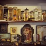 rocaille-antichi-vizi-wunderkammer-negozio-milano