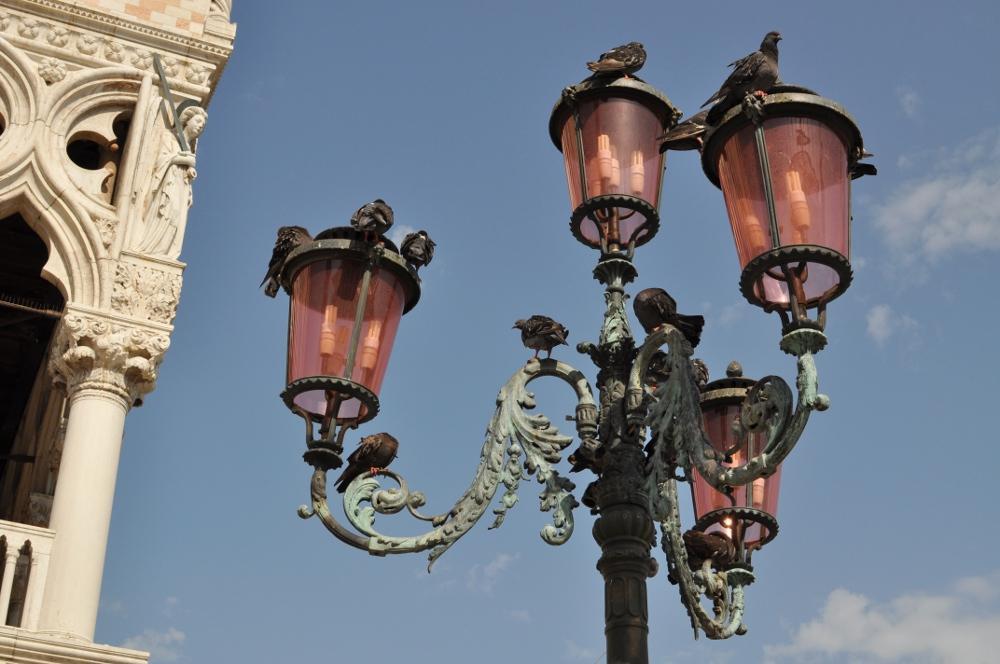 rocaille-blog-venezia-redentore (28)