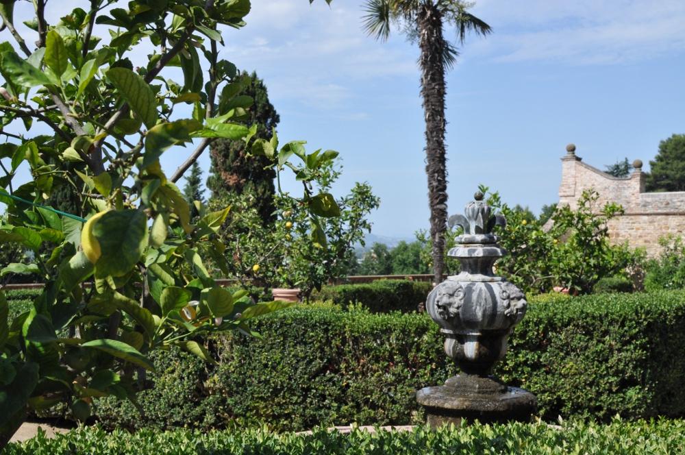 rocaille-blog-villa-caprile-pesaro-marche (8)