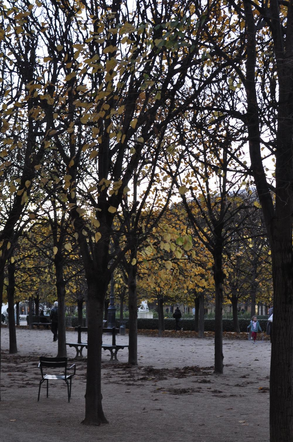 rocaille-blog-paris-november-serge-lutens-boutique