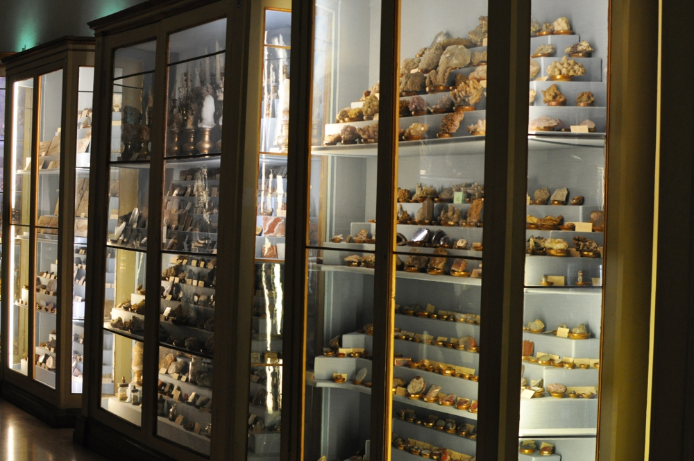 rocaille-blog-reggio-emilia-museo-lazzaro-spallanzani (23)
