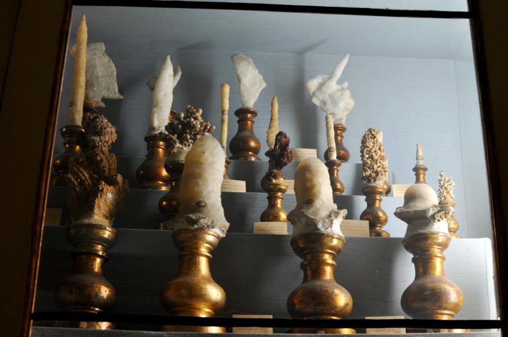 rocaille-blog-reggio-emilia-museo-lazzaro-spallanzani (29)