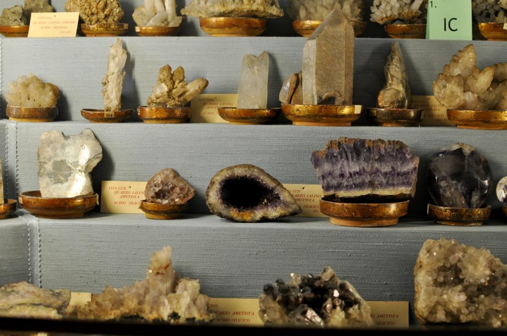 rocaille-blog-reggio-emilia-museo-lazzaro-spallanzani (39)