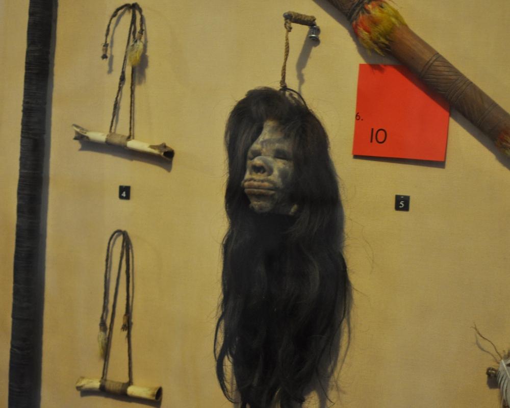rocaille-blog-reggio-emilia-museo-lazzaro-spallanzani (47)