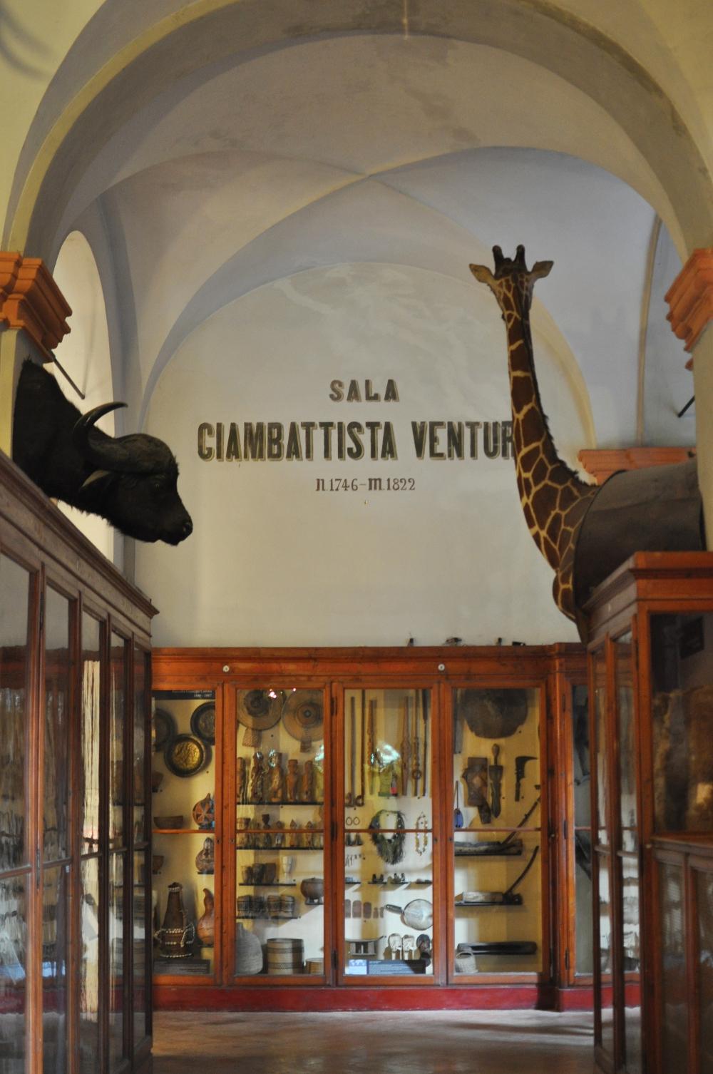 rocaille-blog-reggio-emilia-museo-lazzaro-spallanzani (48)