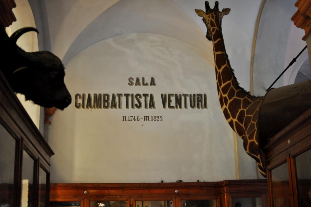 rocaille-blog-reggio-emilia-museo-lazzaro-spallanzani (49)