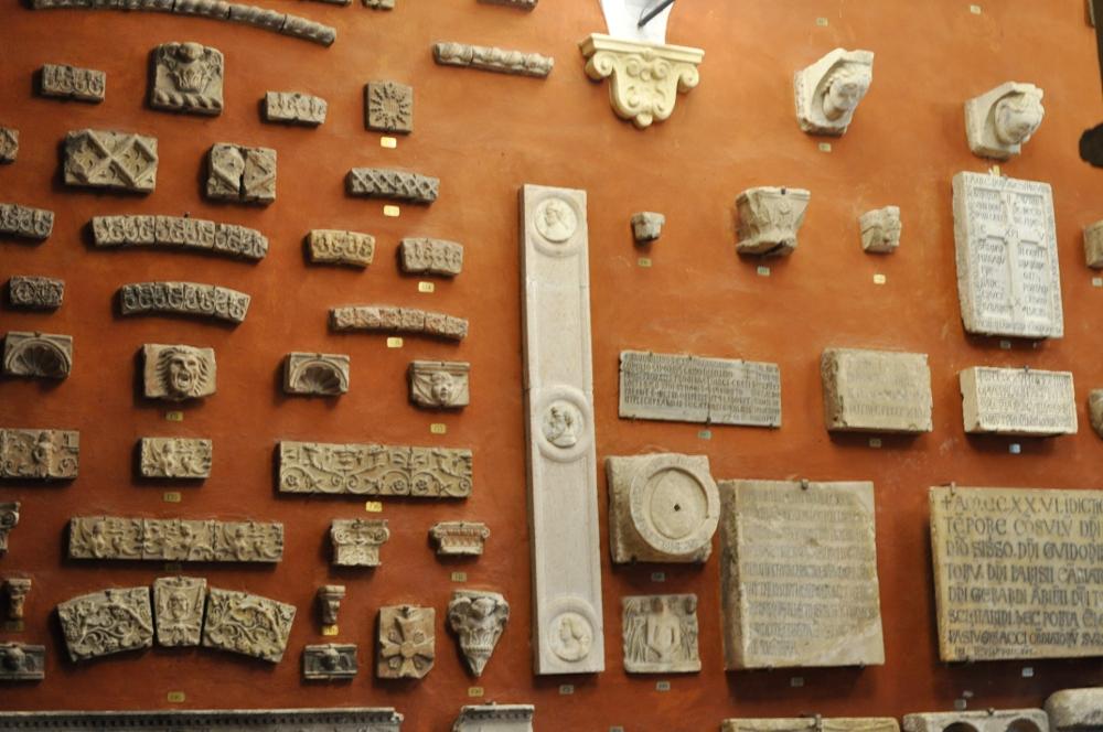 rocaille-blog-reggio-emilia-museo-lazzaro-spallanzani (65)