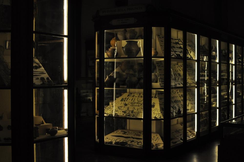rocaille-blog-reggio-emilia-museo-lazzaro-spallanzani (67)