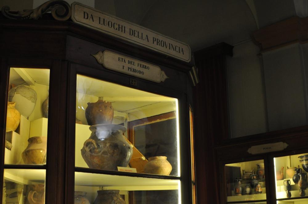 rocaille-blog-reggio-emilia-museo-lazzaro-spallanzani (68)