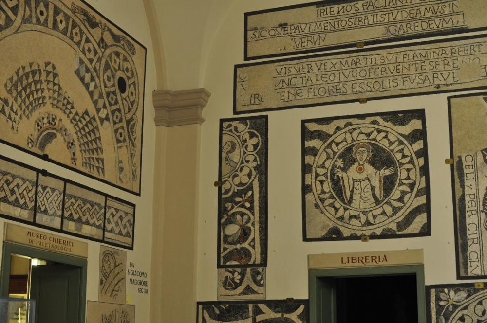 rocaille-blog-reggio-emilia-museo-lazzaro-spallanzani (69)