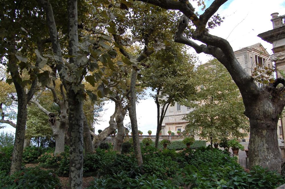 rocaille-blog-villa-aldobrandini-frascati-giardino (17)