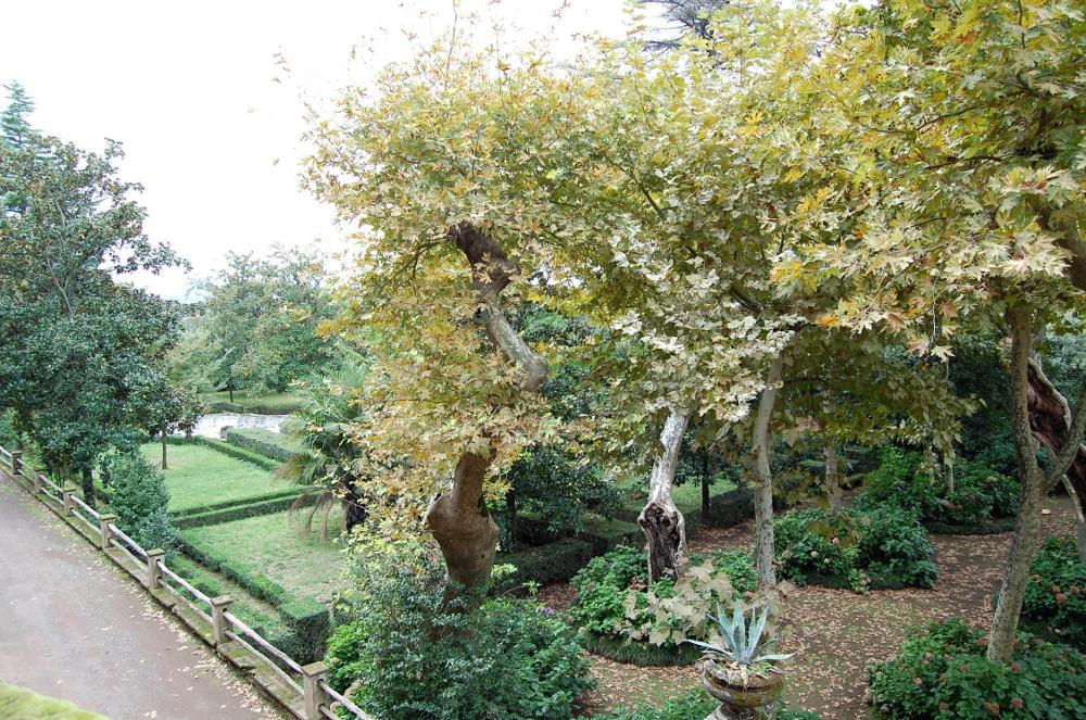 rocaille-blog-villa-aldobrandini-frascati-giardino (21)