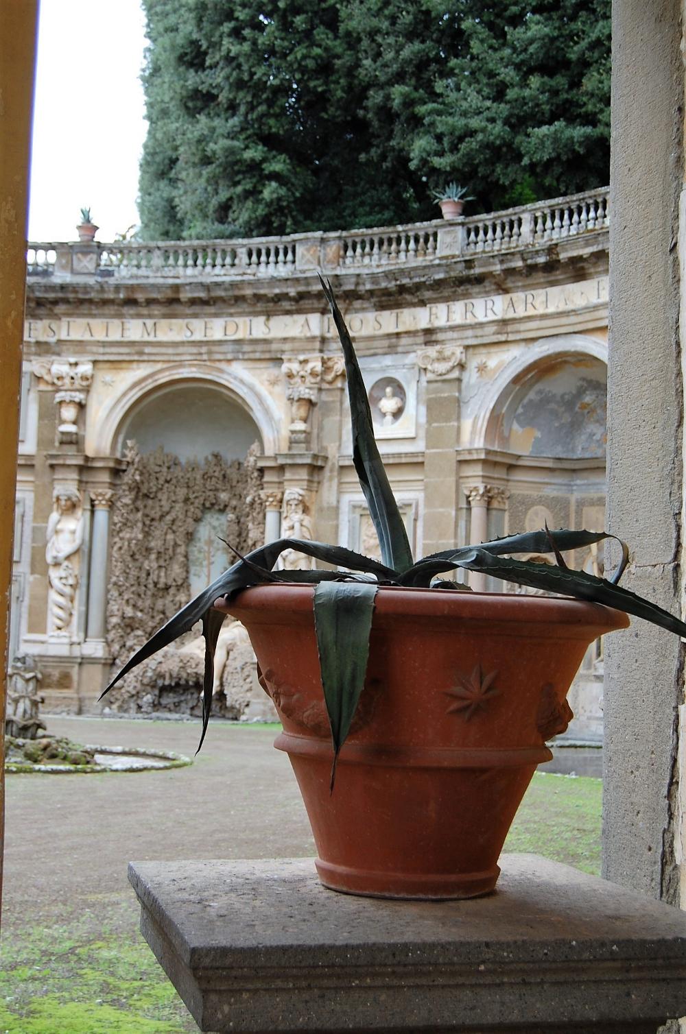 rocaille-blog-villa-aldobrandini-frascati-giardino (32)