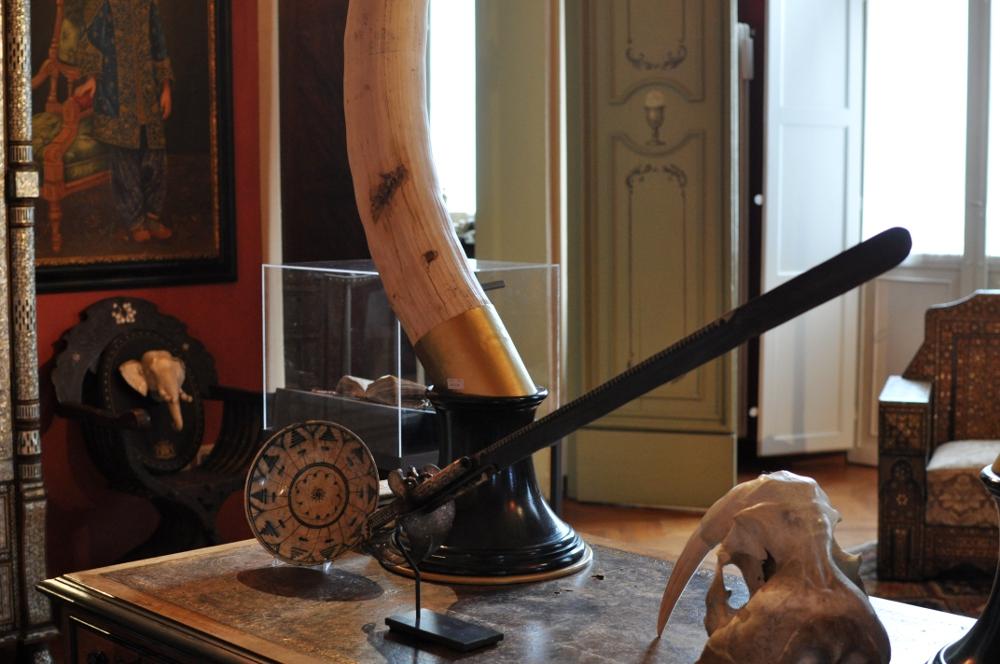 rocaille-blog-ethnologica-galleria-wunderkammer-andrea-filippi-forlì (12)