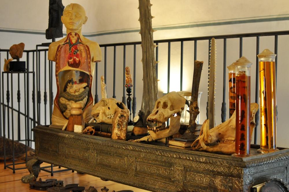 rocaille-blog-ethnologica-galleria-wunderkammer-andrea-filippi-forlì (37)