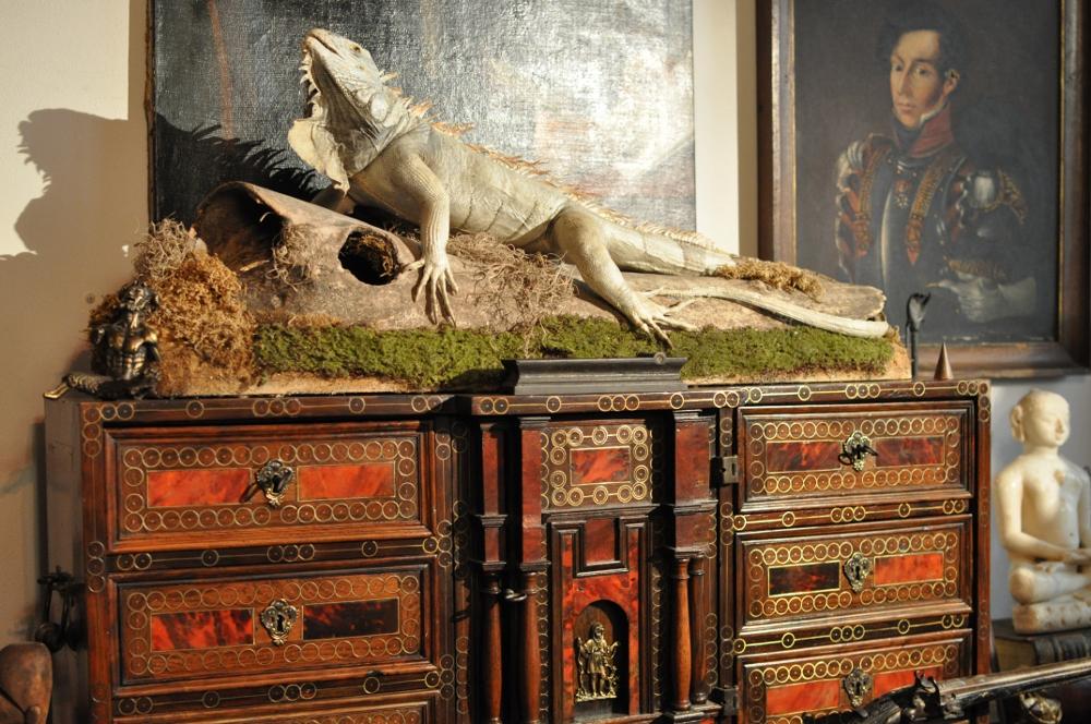 rocaille-blog-ethnologica-galleria-wunderkammer-andrea-filippi-forlì (42)
