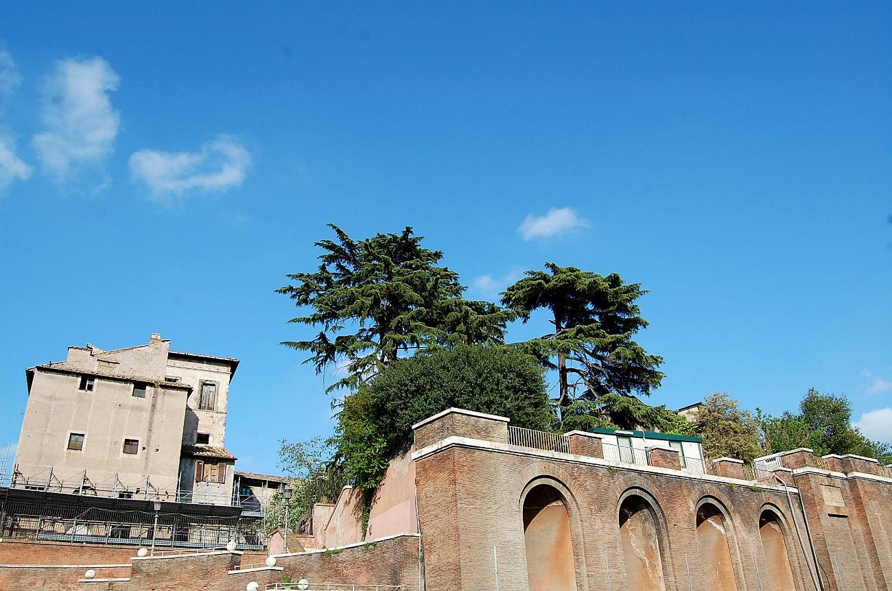 rocaille-blog-palazzo-silvestri-rivaldi-roma-sconosciuta (43)