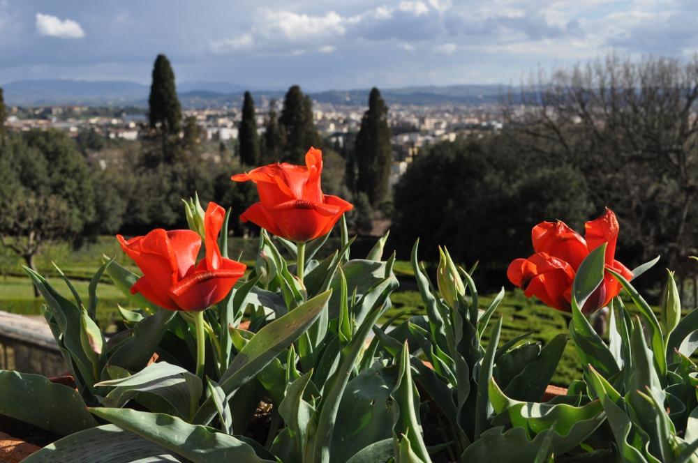 rocaille-blog-villa-la-petraia-firenze-toscana (12)