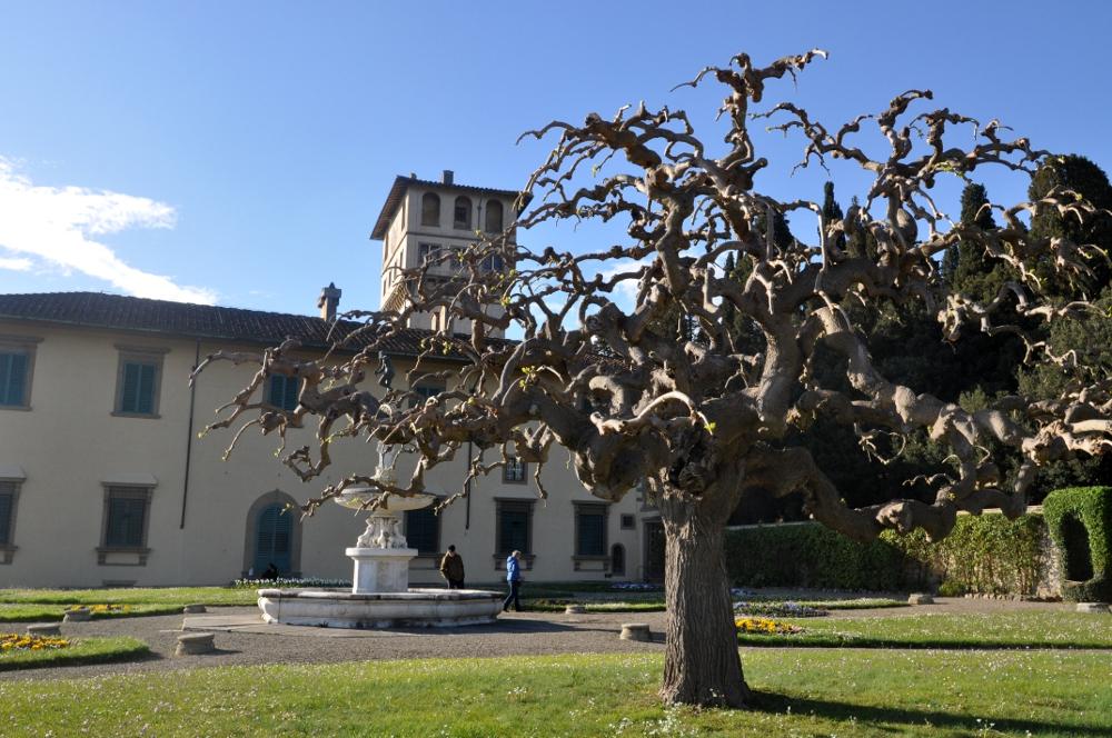 rocaille-blog-villa-la-petraia-firenze-toscana (18)