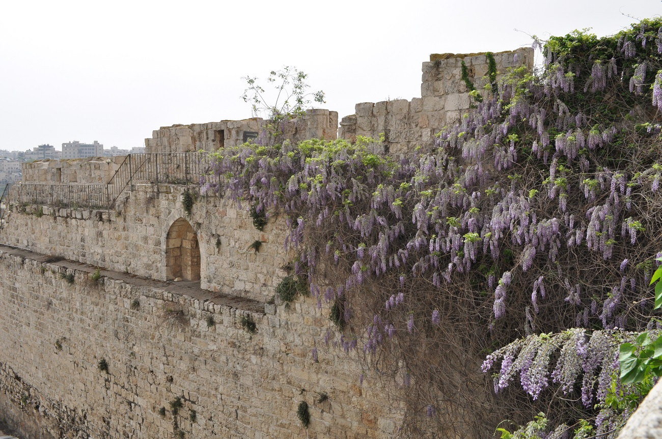 rocaille-blog-jerusalem-israel-holy-land-easter-1