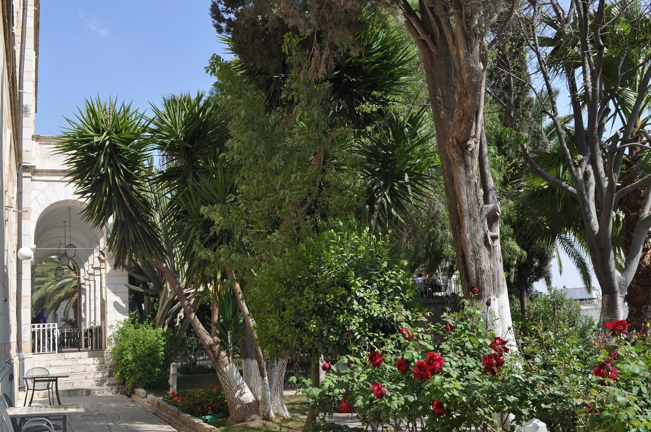rocaille-blog-jerusalem-israel-holy-land-easter-austrian-hospice-rooftop-49