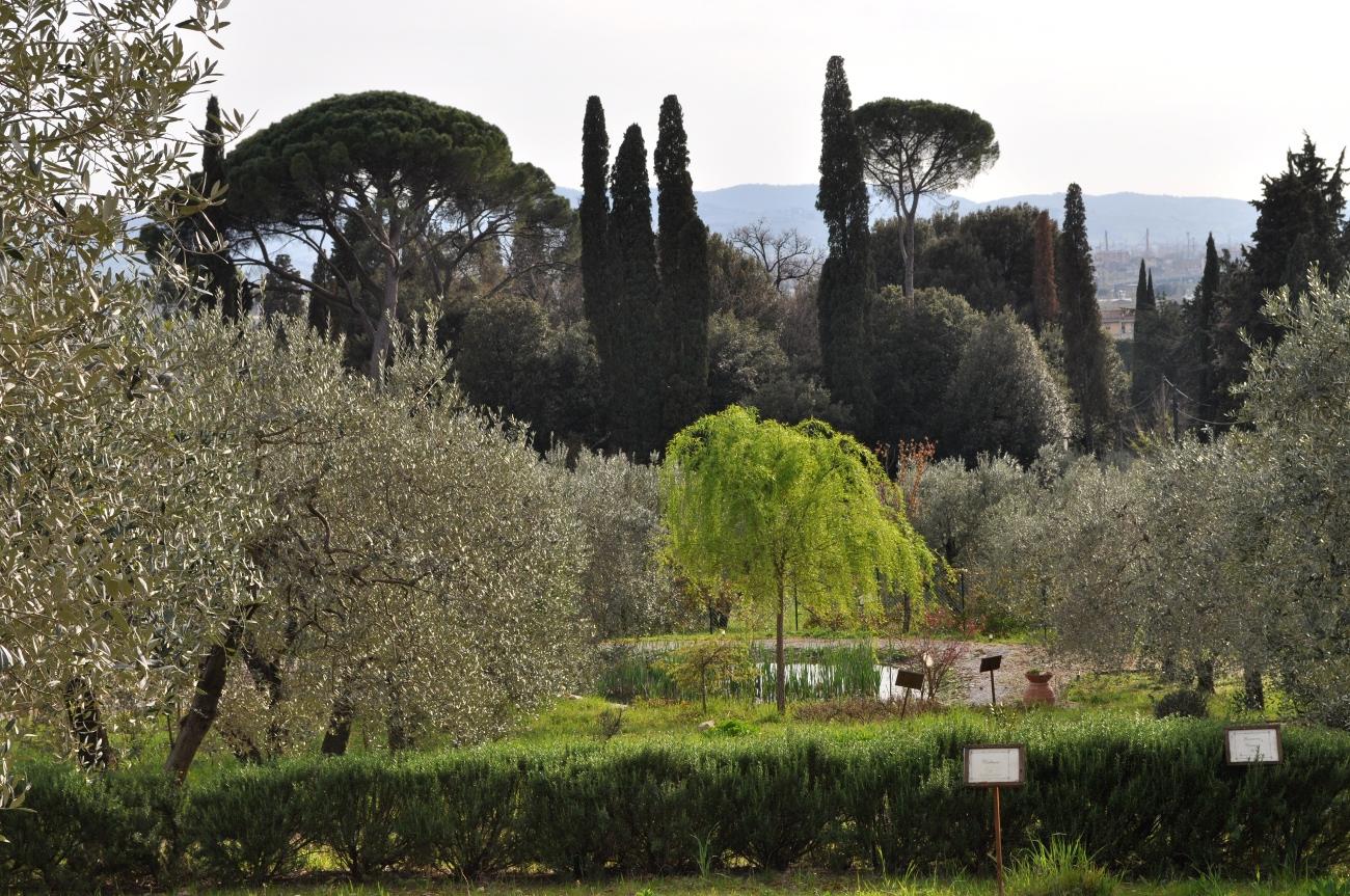 rocaille-blog-officina-profumo-farmaceutica-santa-maria-novella-giardino-negozio-storico-sede-firenze-11
