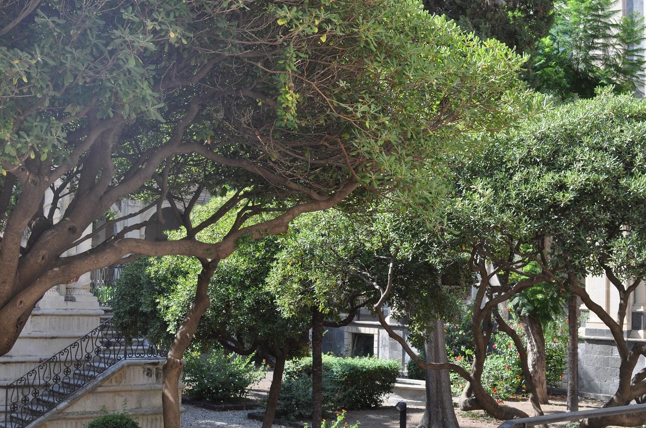 rocaille-blog-catania-sicilia-orientale-tour-42