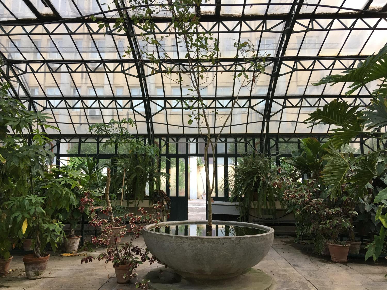 rocaille-blog-palermo-orto-botanico-botanical-garden-24