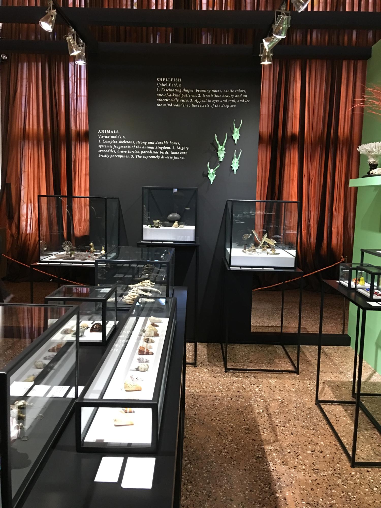 rocaille-blog-venezia-palazzo-mocenigo-cabinet-of-curiosities-collezione-storp-profumo-21