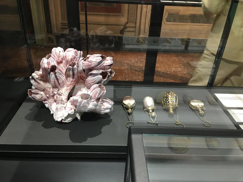 rocaille-blog-venezia-palazzo-mocenigo-cabinet-of-curiosities-collezione-storp-profumo-23