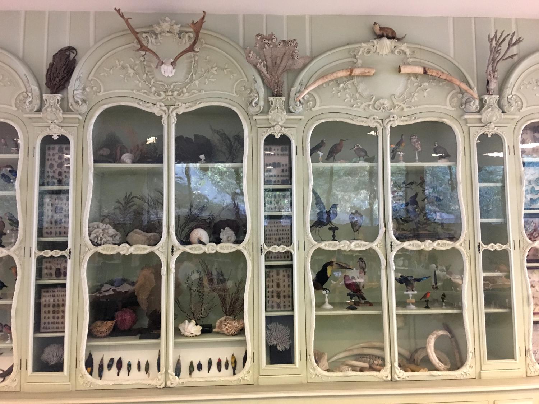 rocaille-blog-cabinet-de-curiosites-joseph-bonnier-de-la-mosson-wunderkammer-2