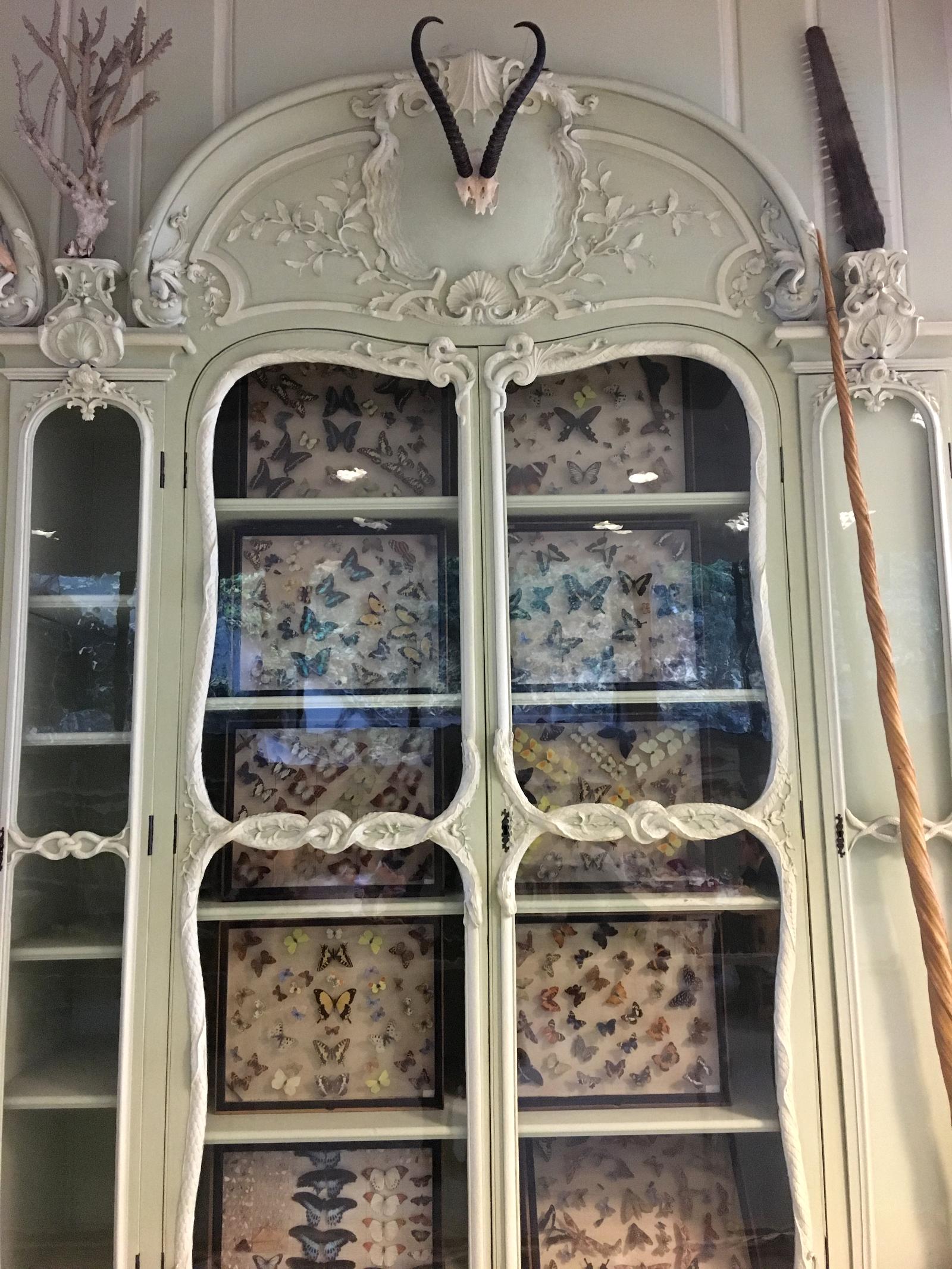 rocaille-blog-cabinet-de-curiosites-joseph-bonnier-de-la-mosson-wunderkammer-3