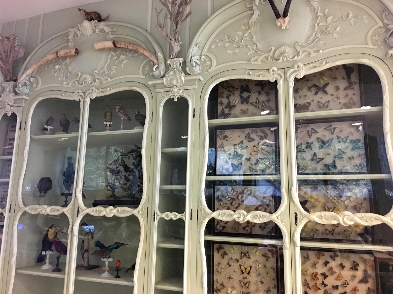 rocaille-blog-cabinet-de-curiosites-joseph-bonnier-de-la-mosson-wunderkammer-4