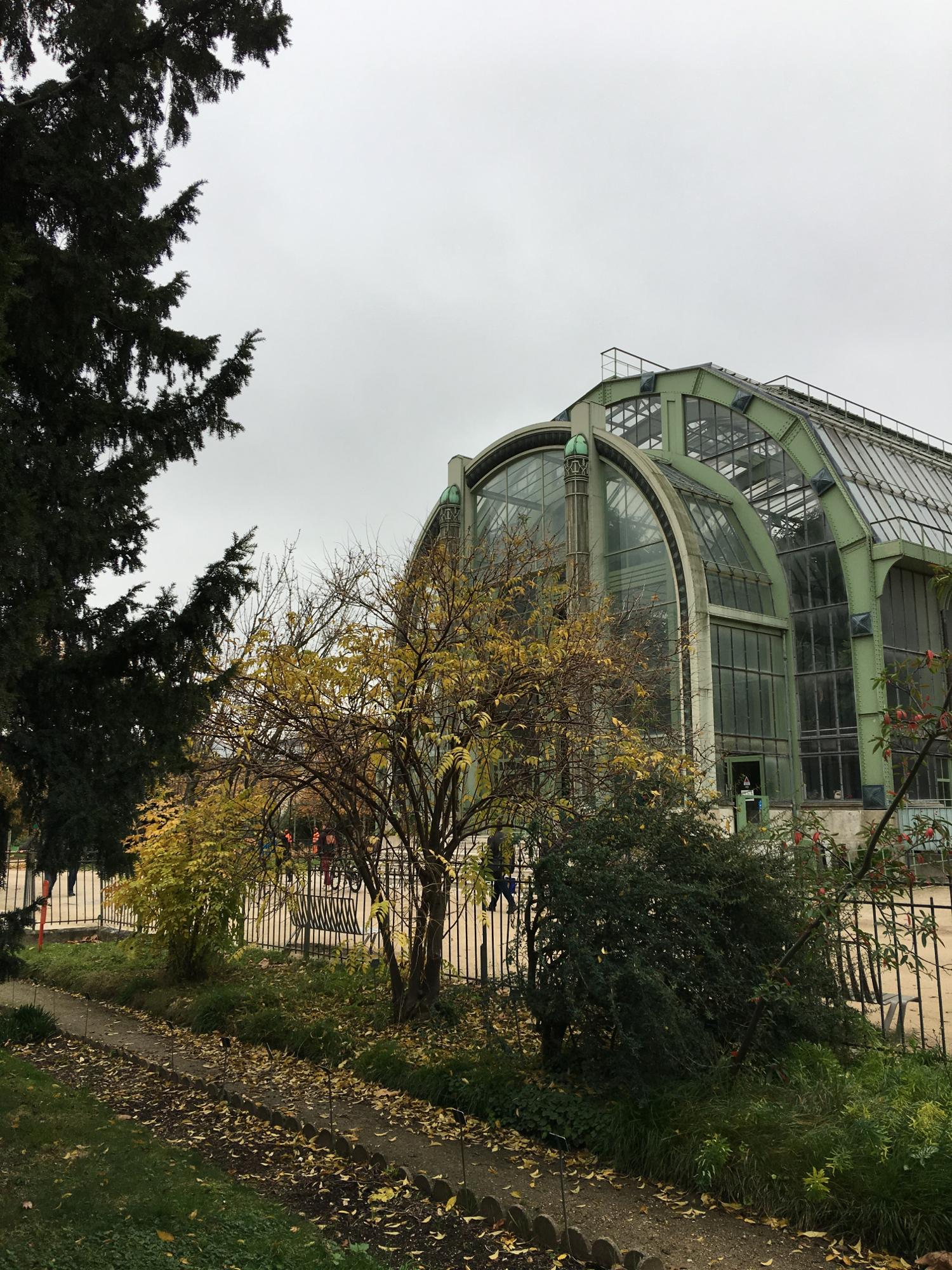 rocaille-blog-paris-jardin-des-plantes-1