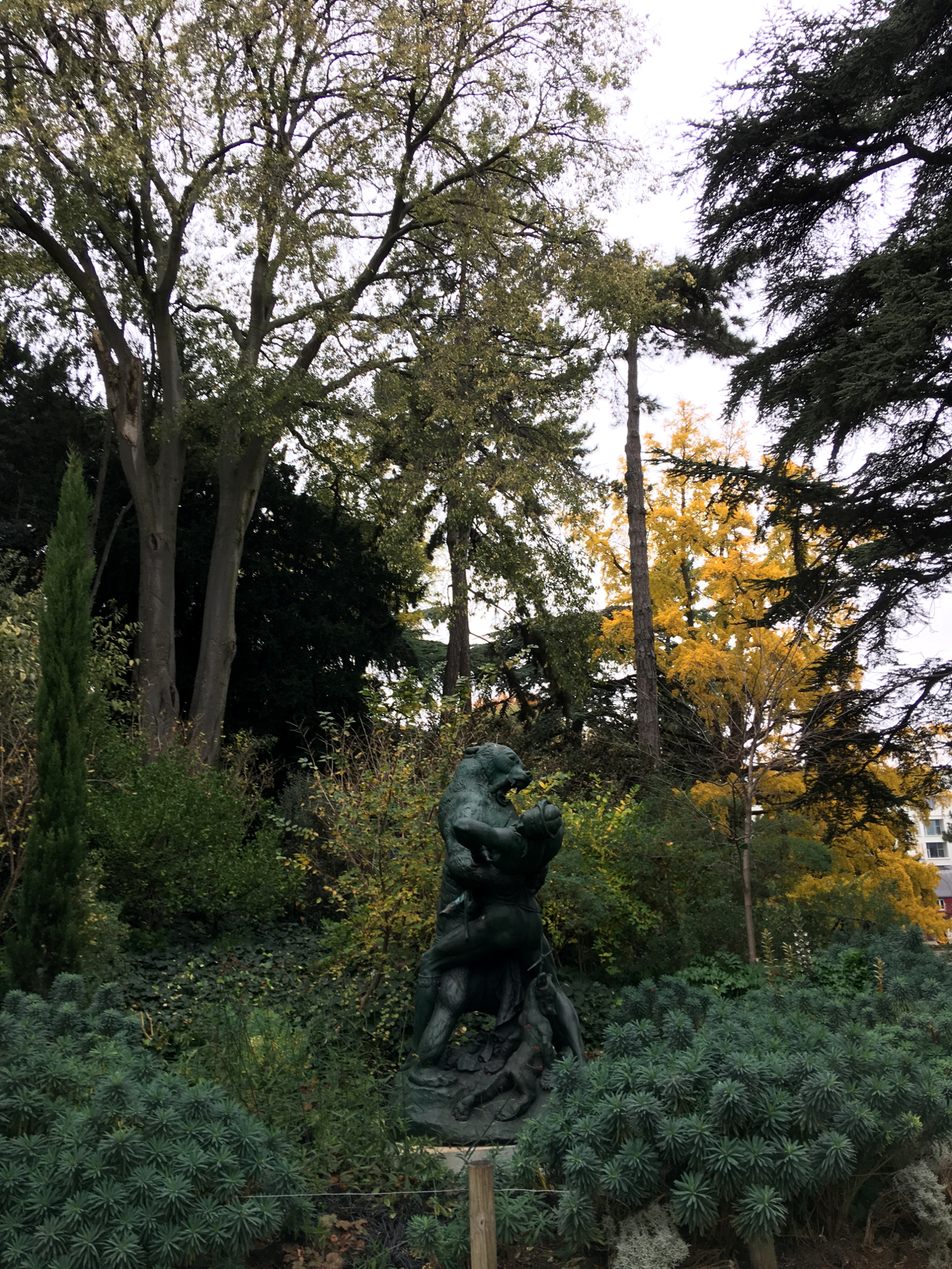 rocaille-blog-paris-jardin-des-plantes-15