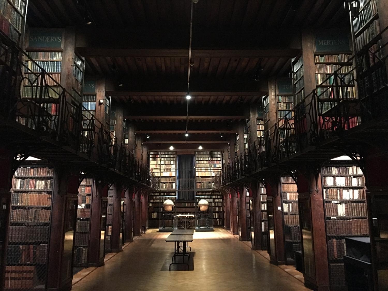 rocaille-blog-antwerpen-anversa-Hendrik-Conscience-Heritage-Library-1